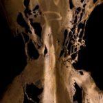 Juno 3. Carole Feuerman